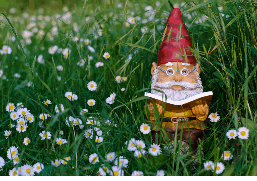 How Do Gnomes Celebrate St. Patrick's Day