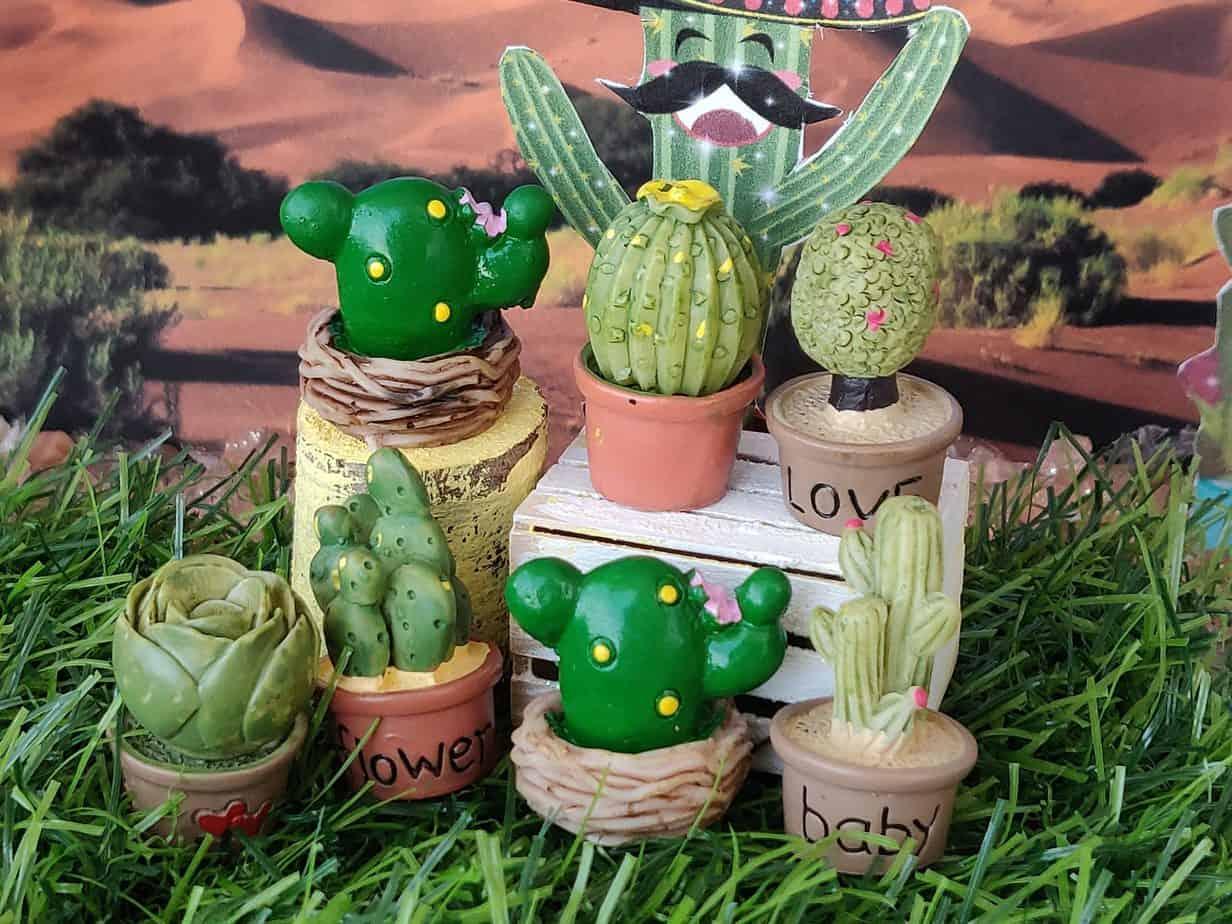 Cactuses Etsy