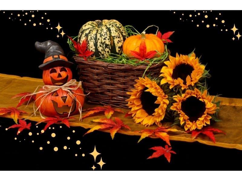 Shopping for Magical Pumpkin Decor