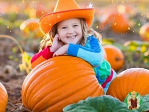 Visit a Magical Pumpkin Patch With Tommy Tinker